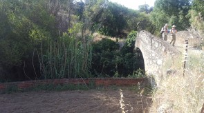 lazarillo3.jpg